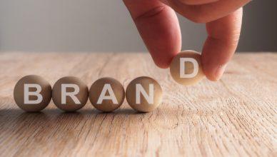 Pelatihan Brand Image and Product