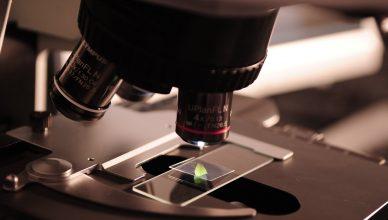 Pelatihan Management of Laboratory Equipment and Evaluation of Measurement Performance